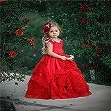 Peggy Gu Traje de Cosplay Princesa Niños Qi Rhinestone Flor Pettiskirt Chica Etapa Vestido Flor Chica Vestido de Boda Fiesta Elegante (tamaño : 4-5T)