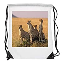 Bunny Organization Magnificent Cheetah Pack Hunting In Group Kings & Queens Of Speed HD Sunshine Light Affect Mammal Animal Lovers Drawstring Folding Gym Bag Perfect for PE School Work Travel Sports