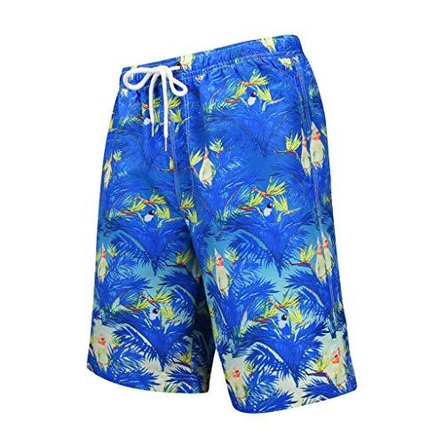 Sannysis Herren 3D Druck Badehose Sommer Badeshorts Hawaii Strand Surf Board Shorts Schnelltrocknend Schwimmhose für Männer (Mesh-Futter) Größen S bis 2XL (S, Blau) - Klassische Drawstring Shorts