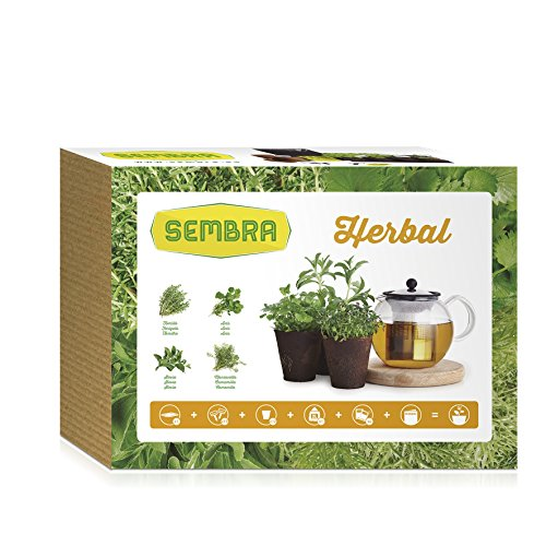 sembra-herbal-kit-de-cultivo