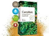Curryblatt Kapseln – mind. 3% natürliches Eisen aus Curryblättern pro Kapsel - vegan, 60 Stk.