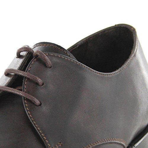 Sendra Boots  7965A, Chaussures de ville à lacets pour homme Marron Marron Box 800