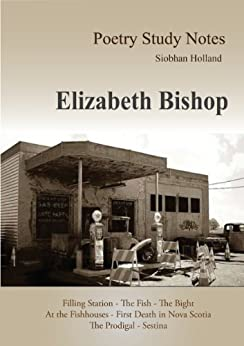 elizabeth bishops poem filling station essay Ms bishop reads three poems from her collection poems: north & south--a cold   in england -- poem -- large bad picture -- at the fishhouses -- filling station.