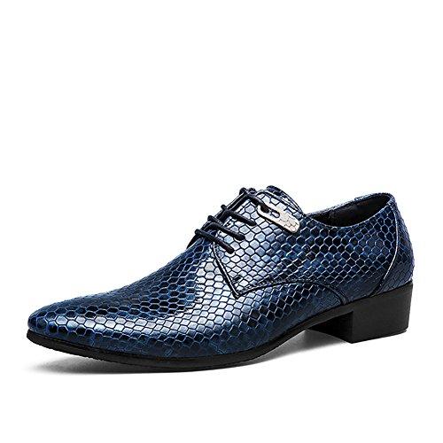 ASHION Business Schnürschuh Herren Schuhe Klassische Spitze Schuhe (46 EU, Blau)