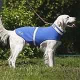 Corky 's Halsbänder see-me Dog Weste, xx-small, Heiler blau