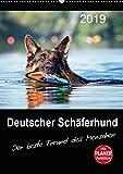 Die besten Freund Planer - Deutscher Schäferhund - Der beste Freund des Menschen Bewertungen