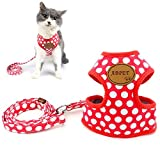 Zunea Hundegeschirr für Kleine Hunde Welpe hund Weste Geschirr mit Leine Set Verstellbar Mesh Gepolstert Kein Pull für Katze Chihuahua Rot S