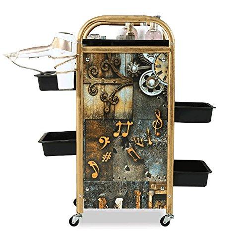 Salon SPA Friseurwagen Barbier Schönheit Lagerung Wagen Färbung Tablett mit 5 Schubladen Haartrockner Halter zum Werkzeug Lagerung, 2 - 5 Schublade Storage Cart