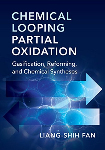 Chemical Looping Partial Oxidation: Gasification, Reforming, and Chemical Syntheses (Cambridge Series in Chemical Engineering)