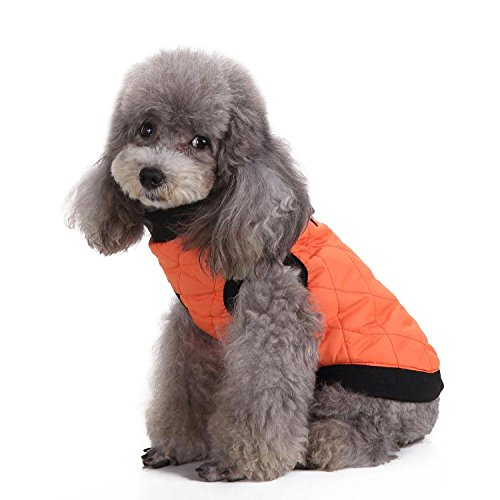 Sweetie Hundemantel FüR Hundekleidung Hundoverall Soft Cosy Orange Color LNAG , m