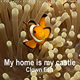 My home is my castle - Clown fish (Wall Calendar 2019 300 × 300 mm Square): This clown fish calendar is the most colourful spectacle for the year. (Monthly calendar, 14 pages ) (Calvendo Animals)