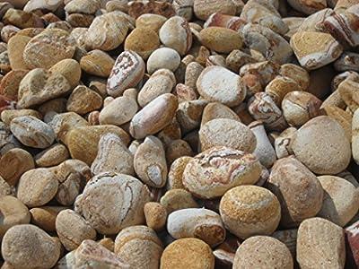 25 kg Rainbow Stone Kiesel 5 - 10 cm - Kieselsteine Findling Kies Splitt - LIEFERUNG KOSTENLOS von Der Naturstein Garten bei Du und dein Garten