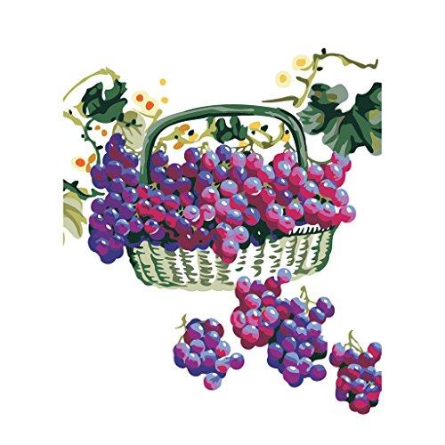 nwand Ölgemälde Malen nach Zahlen Farbe Durch Zahl Dekoration Geschenke für Erweiterte Erwachsene Kinder Anfänger - Traube ()