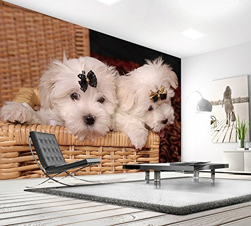 WH-PORP Free Shipping Photo tapetes 3D Custom Cute Cute Dog Marble Tile Tv Wall Living Room-250cmX175cm