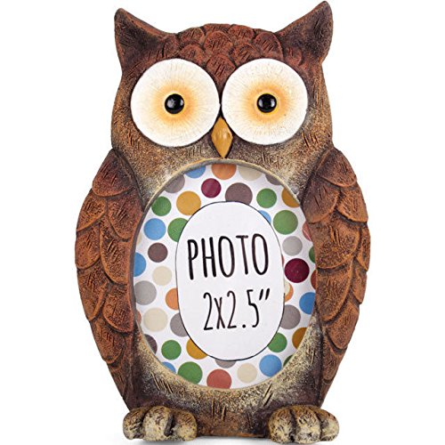 Owl–Forest Friends–Eulenform–Mini-Bilderrahmen, Kunstharz, 10cm (Eule Foto)