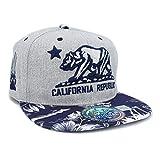 LAFSQ República de California bordada con gorra de snapback rasguño de garra de oso Un tamaño H gris/azul marino/flor