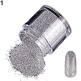 PERIWIN 10 g láser fino purpurina polvo DIY Nail Art Manicura consejos pigmento decoración - plata