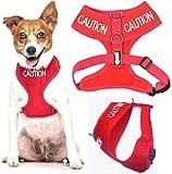 Vorsicht (nicht Ansatz) rot Farbe Kodiert non-pull Vorder- und Rückseite D-Ring gepolstert und wasserdicht Weste Hundegeschirr verhindert Unfälle durch vorwarnen anderer Hunde in Advance (kleine Hals bis zu 31 cm Brust 36-58cm)