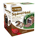 Eichhörnchen Futterstation aus Holz von Kingfisher