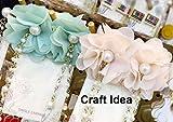 Ce galon de fleurs en mousseline de soie peut être utilisé pour robe de mariage, lingerie, soutien-gorge, robes des poupées, voile de mariée, l'art altéré, couture,costume, bijoux design, taie d'oreiller, décoration de la maison et bien plus encore. ...