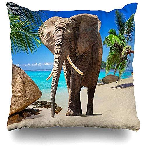 Cojines del sofá Tailandia Elefante africano caminando en la playa tropical grande Naturaleza Mar África Atracción Diseño Safari Inicio Funda de almohada Tamaño cuadrado es Decoración con cremallera Funda de almohada 45X45CM