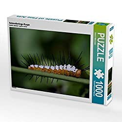 Schmetterlings-Raupe 1000 Teile Puzzle quer