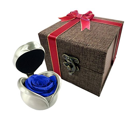Erhalten Blume Rose, einzigartiges Geschenk Idee für Frauen, ihre, Schwester, Mädchen, Tante, Geburtstag, Jahrestag, Hochzeit blau