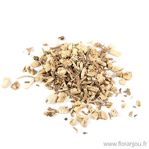 Floranjou - Petit houx (Fragon) racine - 250 g - Nom botanique : Ruscus aculeatus