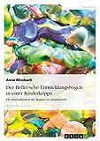 Der Beller'sche Entwicklungsbogen in einer Kinderkrippe: Die Anwendbarkeit des Bogens aus Erziehersicht