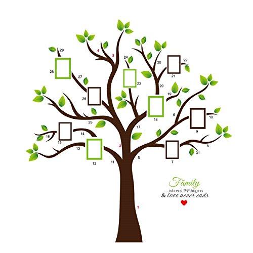 KiKa Monkey® PVC Riesig Schwarz Bilderrahmen Wandaufkleber Speicher Baum Vinyl Zweig Abnehmbare Wandtattoos (A) (Wandtattoo Namen Monkey)