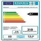 Dyon Sigma 24 Pro-X 60,9 cm (24 Zol...