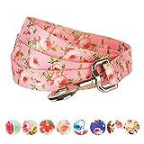 Blueberry Pet 2,5 cm by 120 cm Frühlingsduft Inspirierte Rosenblüten Baby-Pink Basic Nylon-Hundeleinen, L, Passender Hundehalsband erhältlich separate