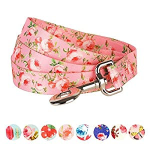 Blueberry-Pet-Cherry-Rose-or-Macaroon-Cake-Pattern-Dog-Lead-Matching-Collar-Available-Separately