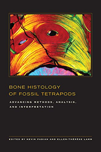Bone Histology of Fossil Tetrapods - Advancing Methods, Analysis, and Interpretation Lane Bone China