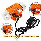 MOMOJA Motor de vibración Asynchronous 40W / 50W / 100W 3000 RPM 220V para Aplicación en Minería, Metalurgia, Carbón  (1 Fase 40W)