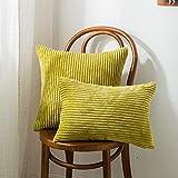 CHDMYTG Kissenbezug Super-Soft Decor Striped Velvet Cord Dekoration Kissen Für Hom Sofa Dekorative Kissen Größe S/M/L 30 X 50 cm X