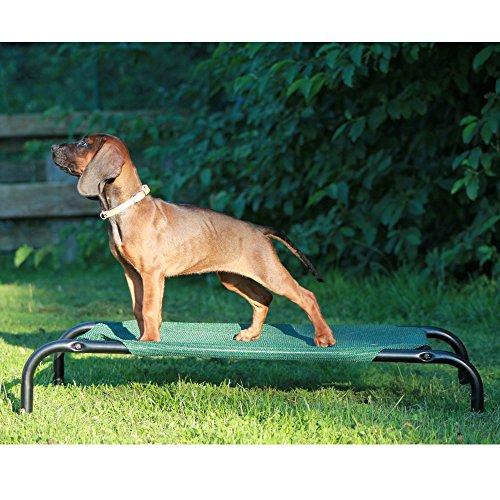 Coolaroo Hundebett Klein Hundeliege Hundesofa Haustierbett Schlafplatz Sofa