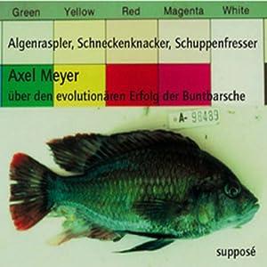 Algenraspler, Schneckenknacker, Schuppenfresser. Über den evolutionären Erfolg der Buntbarsche