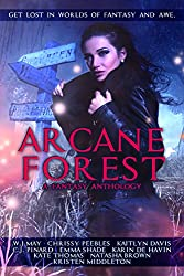 Arcane Forest Anthology: Get Lost in Worlds of Fantasy and Awe (English Edition)