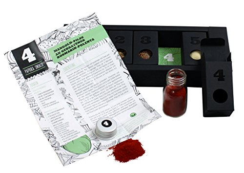 Gewürzset Vegan - Die perfekte Geschenkidee für Geniesser - das ideale Weihnachtsgeschenk - Kräuter - und Gewürzmischungen mit Rezepten zum Nachkochen - vegane Küche - veganes Geschenkset - 4