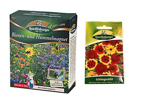Bienen- und Hummelmagnet & Schöngesicht | Blumensamen von Quedlinburger Saatgut