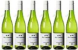 San Valentín Torres - Vino Blanco - 750 ml, paquetede 6