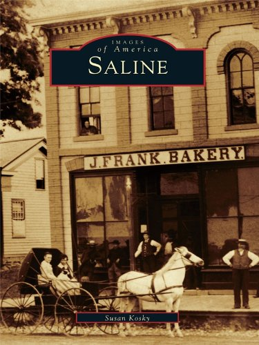 Saline (Images of America) (English Edition)