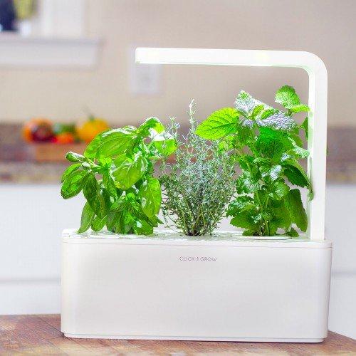 Smart Herb Garden (blanc)