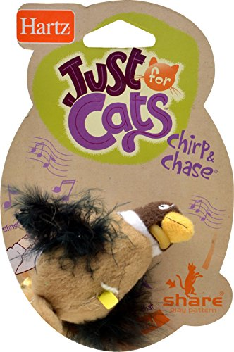 hartz-chirp-n-chase-cat-toy