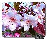 Spring. (flores crateagus) Mouse Pad, Mousepad (Flowers Mouse Pad)