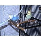 Anflughilfe / Anflugstange für den Vogelkäfig oder die Voliere. Tolles, handgemachtes Vogelzubehör aus bestem Naturholz