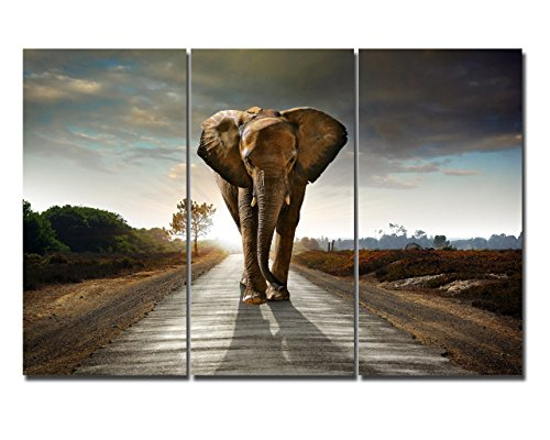 Leinwandbild Bild Big Elephant on Street Tier Wild Safari Afrika Zoo Elefant Dekobild Wanddeko Deco Wandbild XXL mehrteilig dreiteilig Triptychon No.117 (150x100cm)