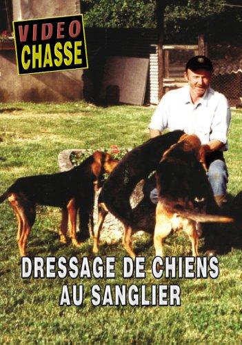 Dressage de chiens au sanglier - Vidéo Chasse - Chiens de chasse