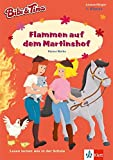 Bibi & Tina - Flammen auf dem Martinshof: Lesen lernen - 1. Klasse ab 6 Jahren (A5 Lese-Heft) (Lesen lernen mit Bibi und Tina)